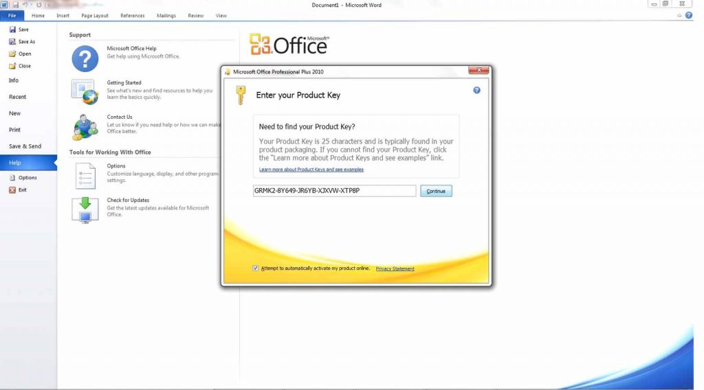 office 2010 professional with product key